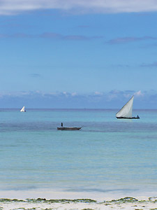 The beauty of Zanzibar